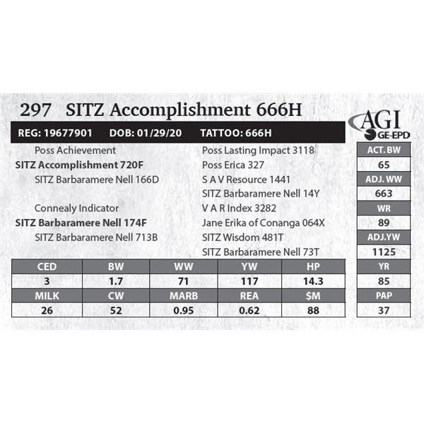 SITZ Accomplishment 666H