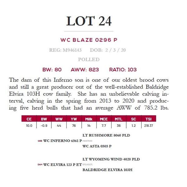 WC BLAZE 0296 P