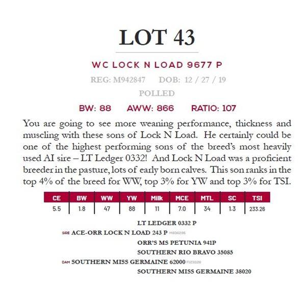 WC LOCK N LOAD 9677 P