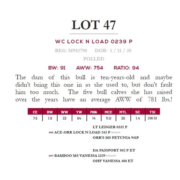 WC LOCK N LOAD 0239 P