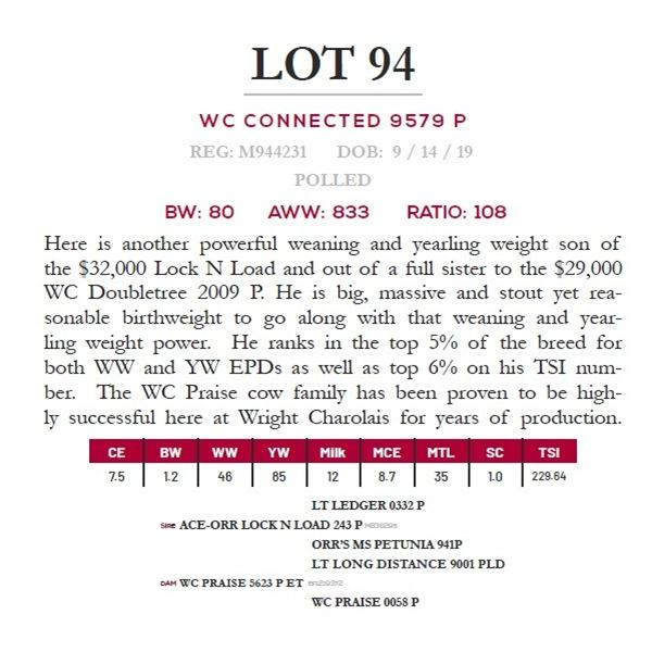 WC CONNECTED 9579 P