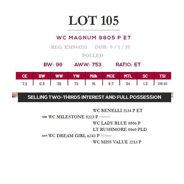 WC MAGNUM 9805 P ET