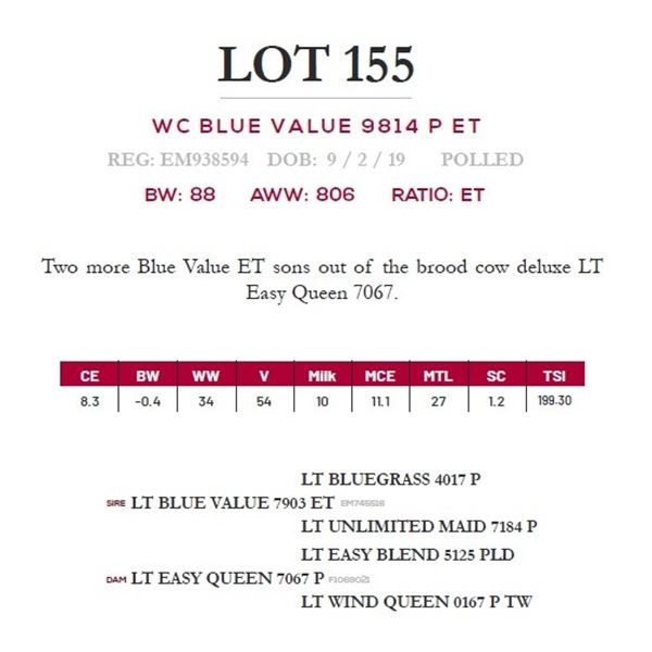 WC BLUE VALUE 9814 P ET