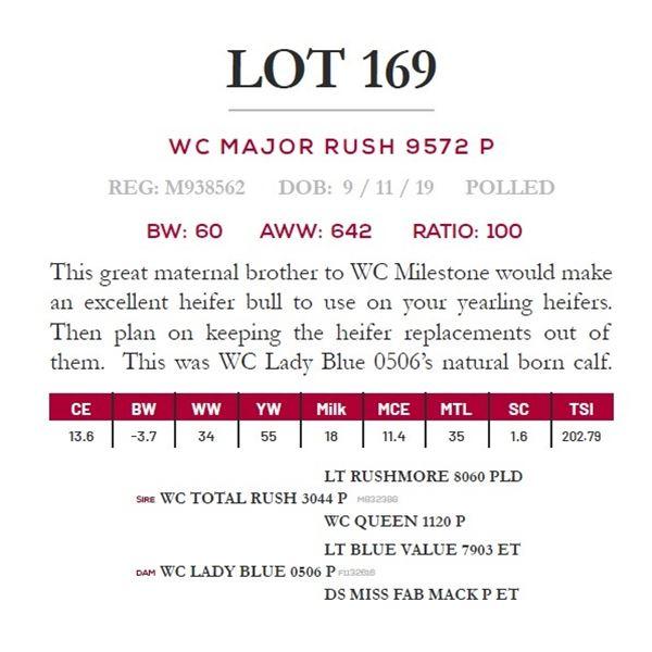WC MAJOR RUSH 9572 P