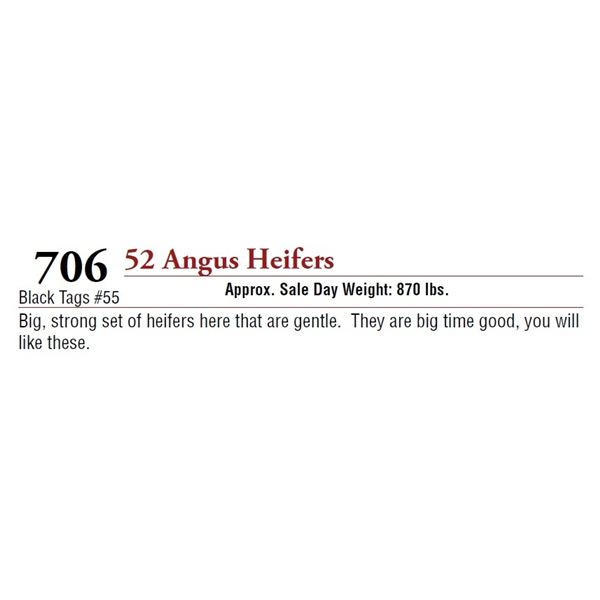 52 ANGUS HEIFERS
