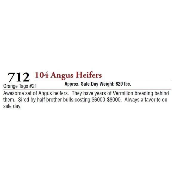 104 ANGUS HEIFERS