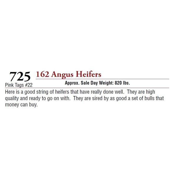 162 ANGUS HEIFERS