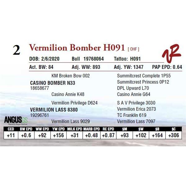VERMILION BOMBER H091