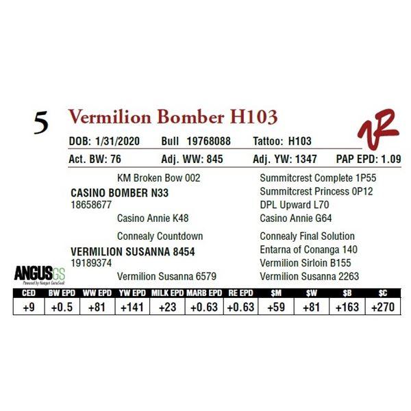 VERMILION BOMBER H103