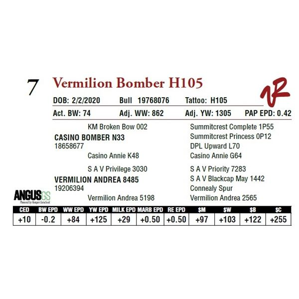 VERMILION BOMBER H105