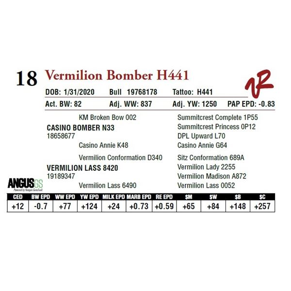 VERMILION BOMBER H441