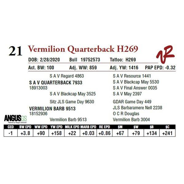 VERMILION QUARTERBACK H269