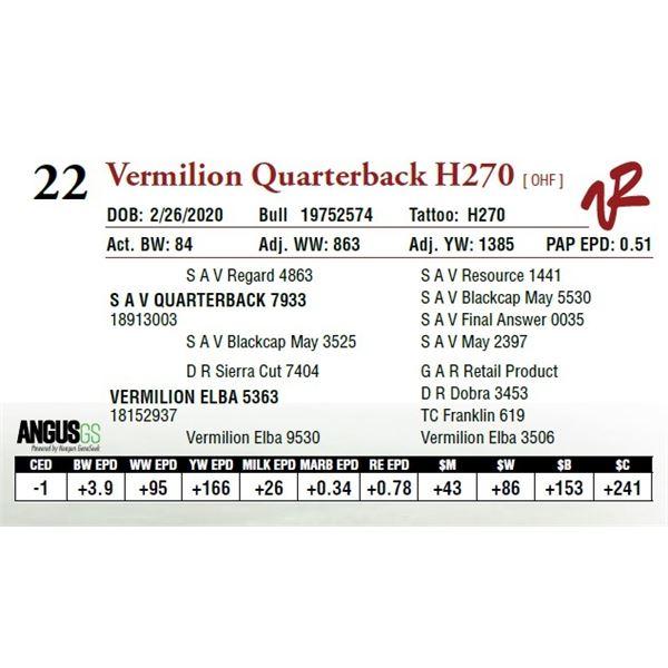 VERMILION QUARTERBACK H270