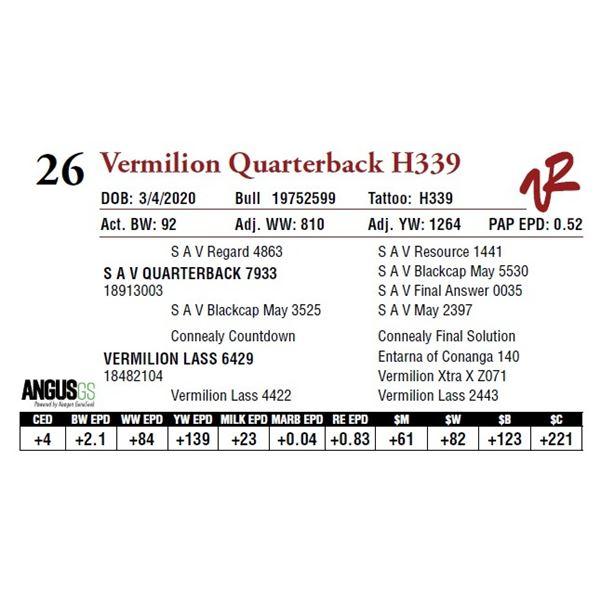 VERMILION QUARTERBACK H339
