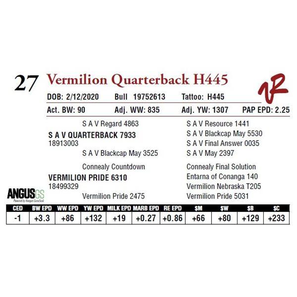 VERMILION QUARTERBACK H445