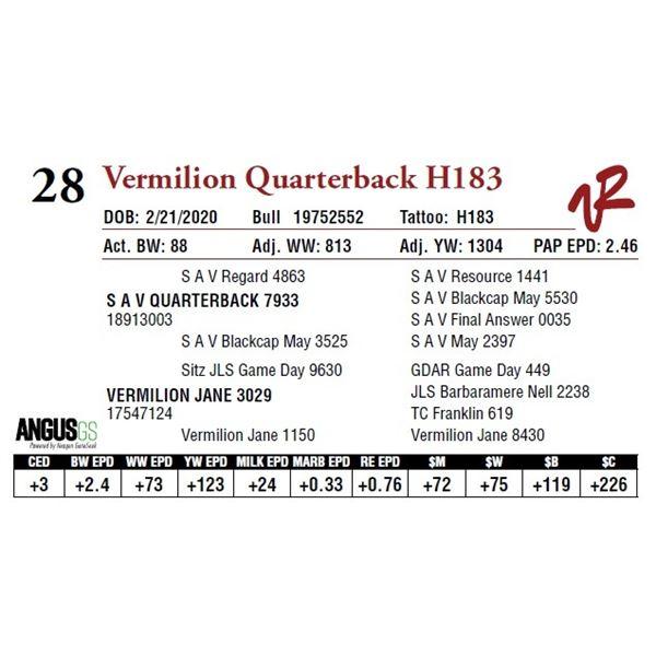 VERMILION QUARTERBACK H183