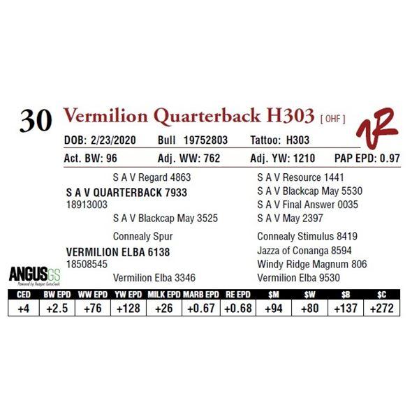 VERMILION QUARTERBACK H303