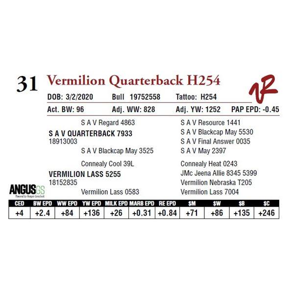 VERMILION QUARTERBACK H254