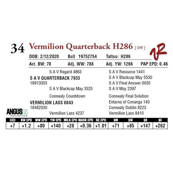 VERMILION QUARTERBACK H286