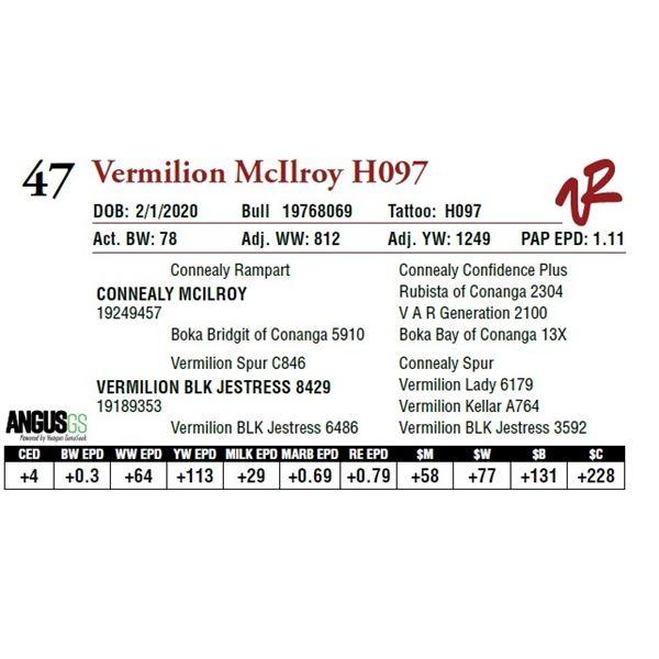 VERMILION MCILROY H097