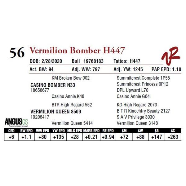 VERMILION BOMBER H447