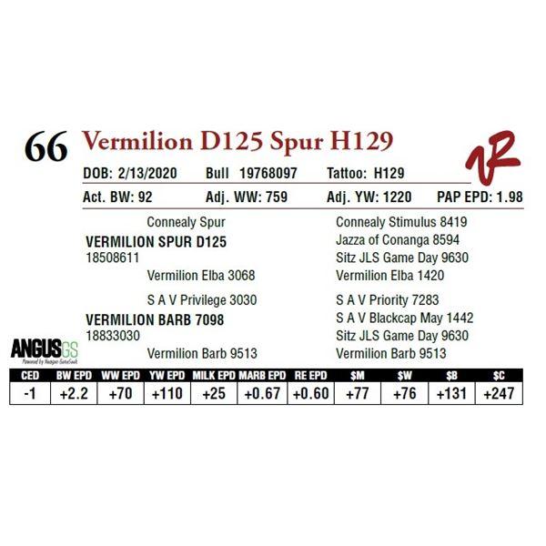 VERMILION D125 SPUR H129