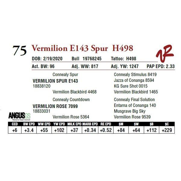 VERMILION E143 SPUR H498