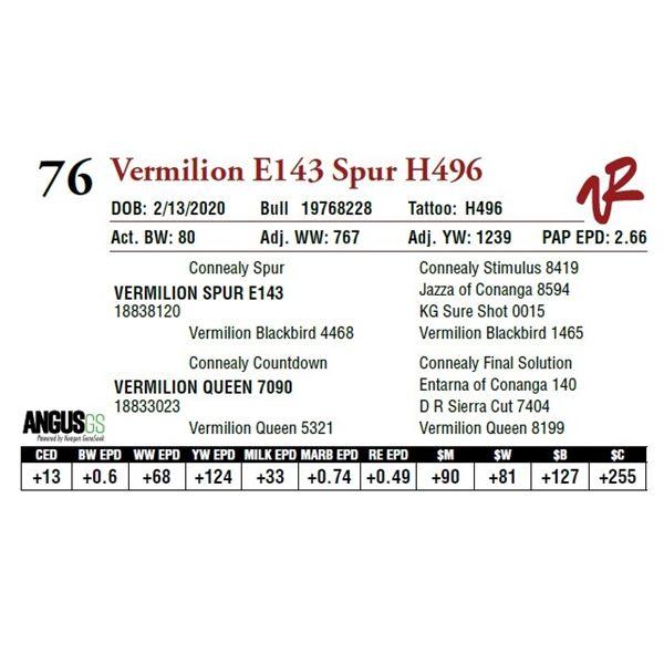 VERMILION E143 SPUR H496