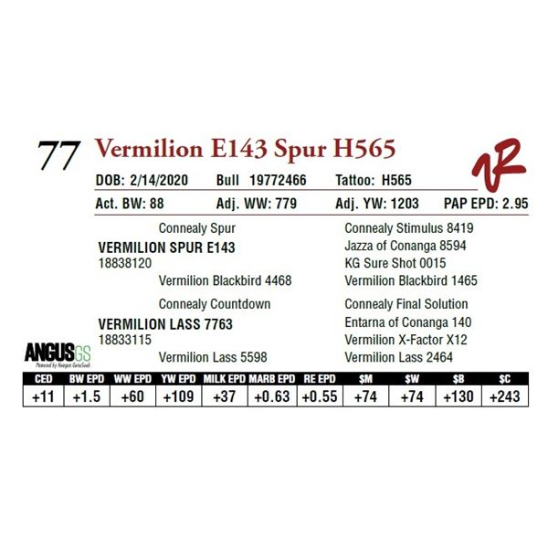 VERMILION E143 SPUR H565