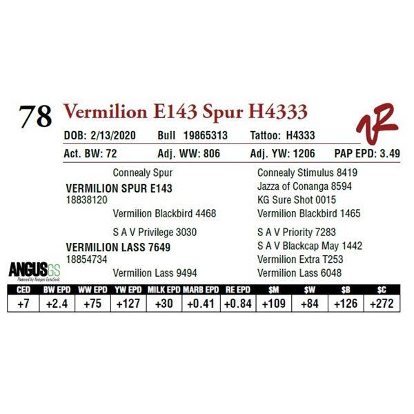 VERMILION E143 SPUR H4333
