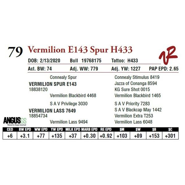 VERMILION E143 SPUR H433