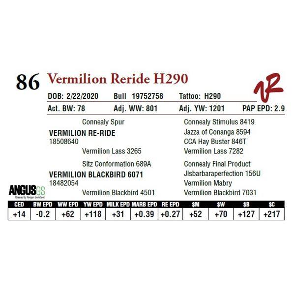 VERMILION RERIDE H290