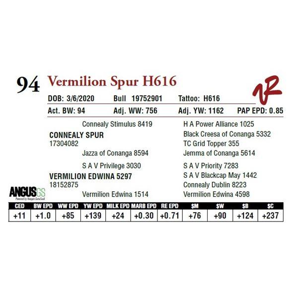 VERMILION SPUR H616