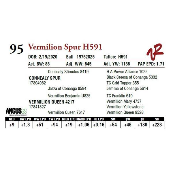 VERMILION SPUR H591