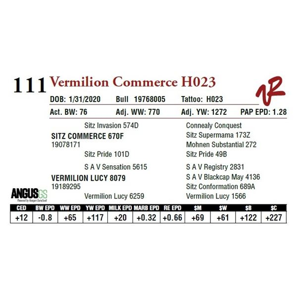 VERMILION COMMERCE H023