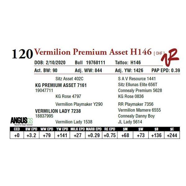 VERMILION PREMIUM ASSET H146