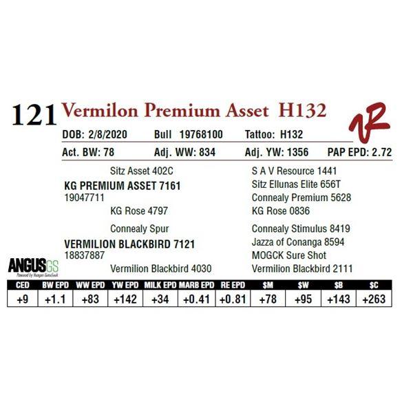 VERMILION PREMIUM ASSET H132