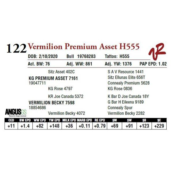 VERMILION PREMIUM ASSET H555