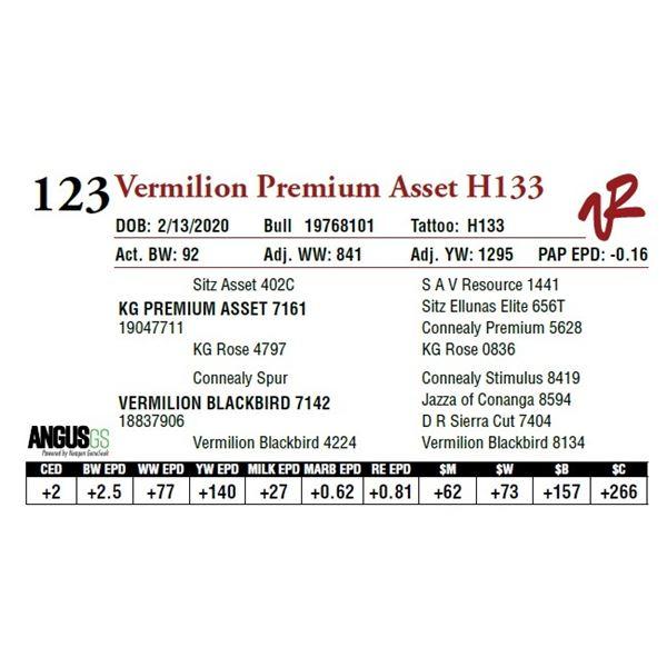 VERMILION PREMIUM ASSET H133