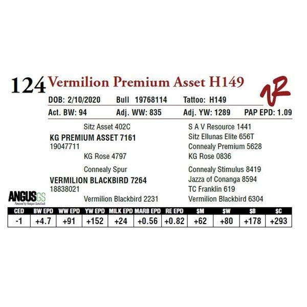 VERMILION PREMIUM ASSET H149
