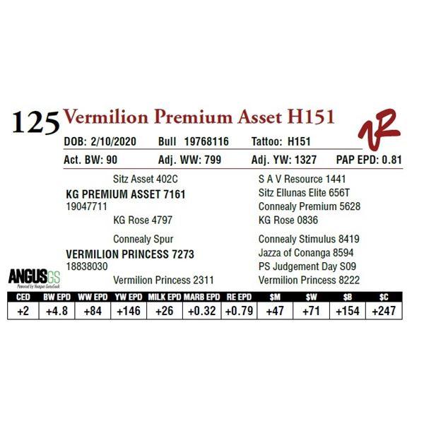 VERMILION PREMIUM ASSET H151