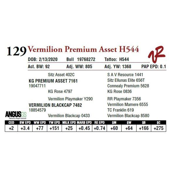 VERMILION PREMIUM ASSET H544