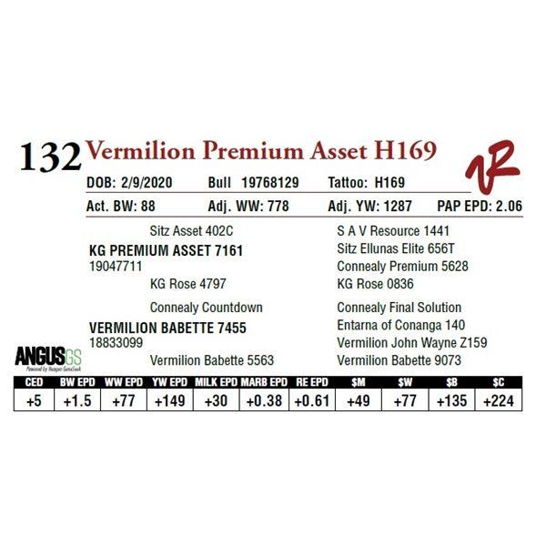 VERMILION PREMIUM ASSET H169