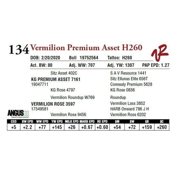 VERMILION PREMIUM ASSET H260