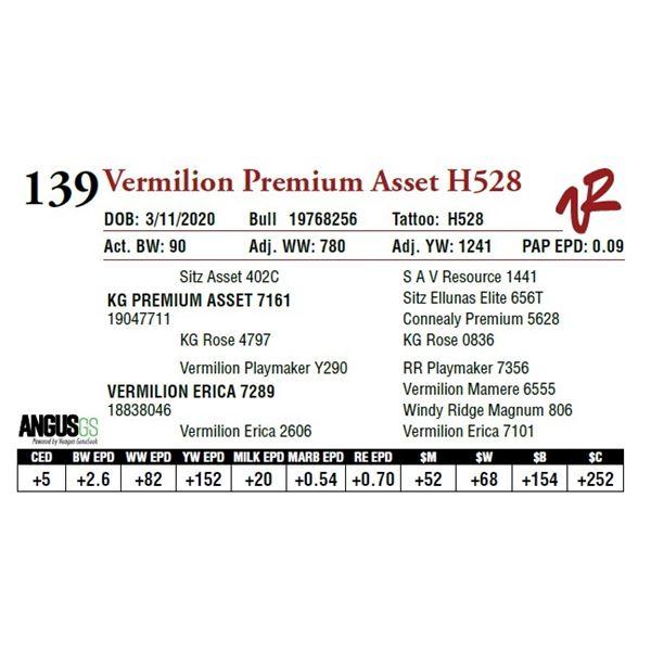 VERMILION PREMIUM ASSET H528