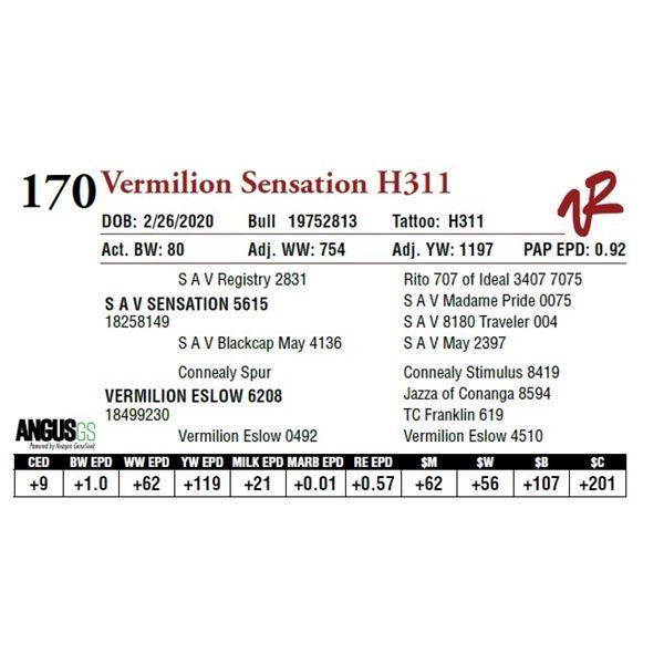 VERMILION SENSATION H311