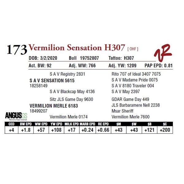 VERMILION SENSATION H307