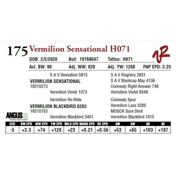 VERMILION SENSATIONAL H071