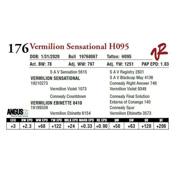VERMILION SENSATIONAL H095
