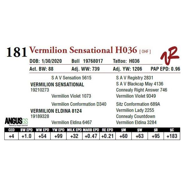VERMILION SENSATIONAL H036
